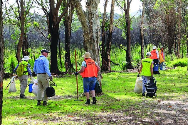 Image of volunteers at Mambo wetlands