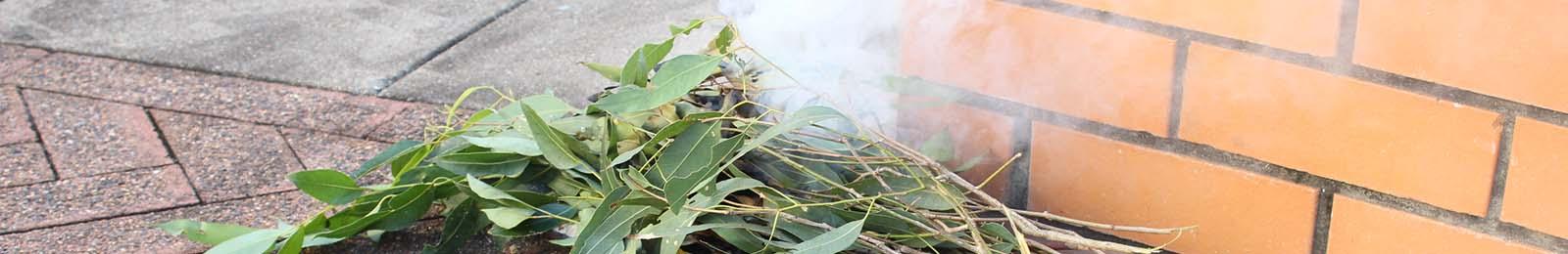 Image of leaves burning