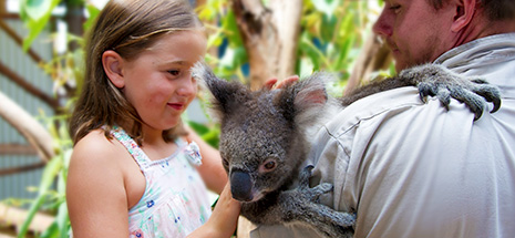 Girl patting koala