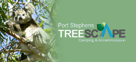 Port Stephens Treescape camping and Accomodation