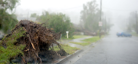 Raymond Terrace storm 2015