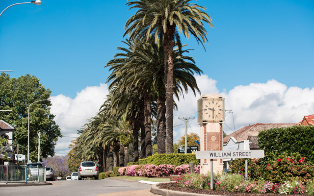 William Street roundabout in Raymond Terrace with the historic clock and palm trees in the background