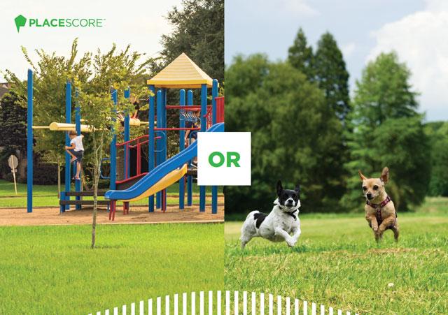 Image of playground or dog park