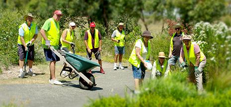 Corlette Parks Reserves and Landcare Volunteers