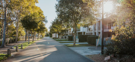 A sunlit residential street