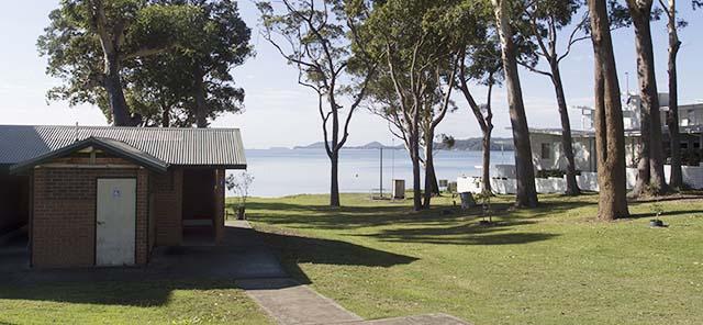 Kangaroo Reserve 1