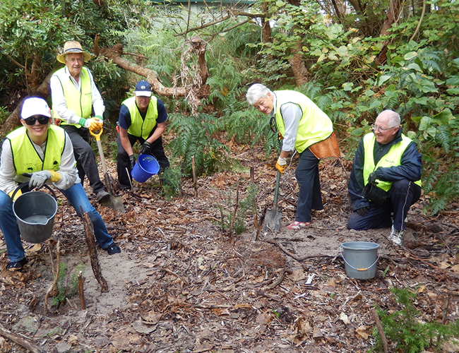 Nelson Bay West Parkcare Committee