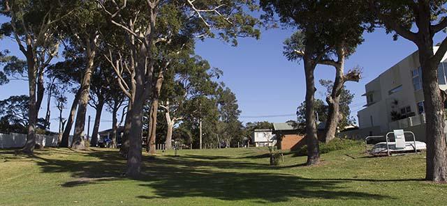 Kangaroo Reserve 3