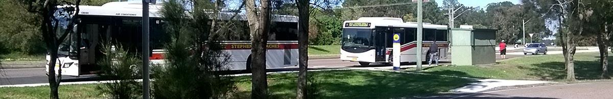 Transport in Port Stephens banner image