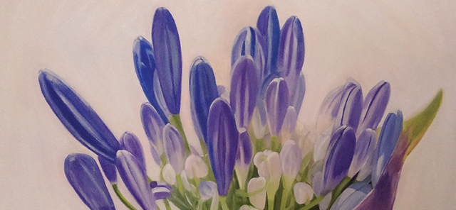 Painting of agapanthus