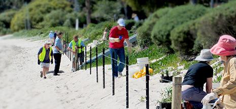 Shoal Bay Beach Preservation Committee voluneteers