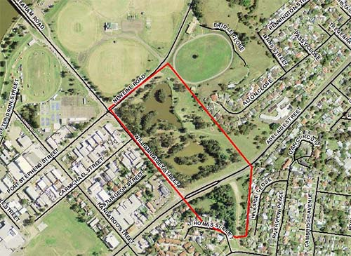This image shows the location of flying fox camps in Raymond Terrace. They are usually located in Newbury Reserve and Ross Walbridge Reserve.